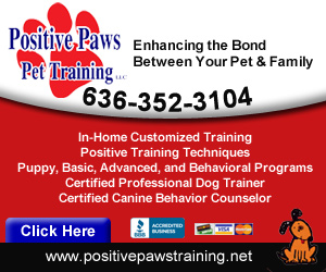Positive Paws Pet Training Listing Image